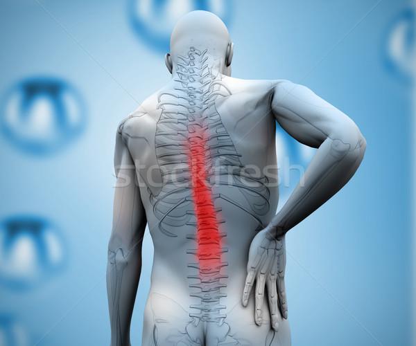 Digital descobrir dor nas costas esqueleto corpo Foto stock © wavebreak_media