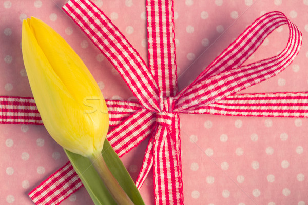 Yellow tulip resting on girly present Stock photo © wavebreak_media