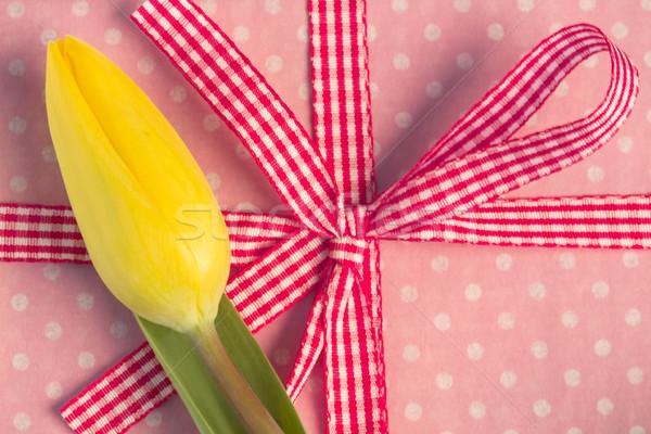 żółty tulipan obecnej liści zielone Zdjęcia stock © wavebreak_media