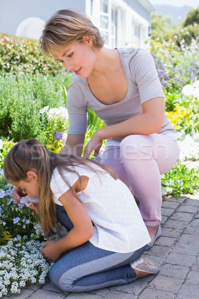 Mère fille fleurs à l'extérieur jardin femme Photo stock © wavebreak_media