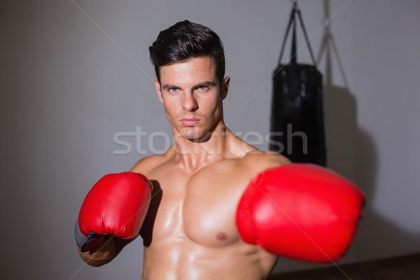 Ciddi kas boksör sağlık kulüp portre Stok fotoğraf © wavebreak_media