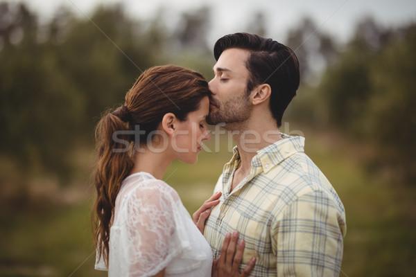 дружок целоваться подруга области оливкового фермы Сток-фото © wavebreak_media