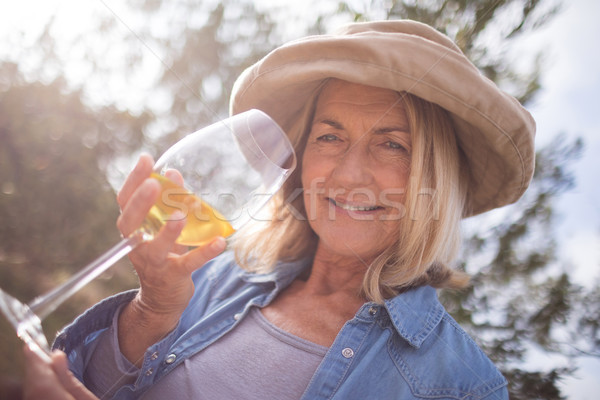 Mulher olhando vidro vinho azeitonas fazenda Foto stock © wavebreak_media