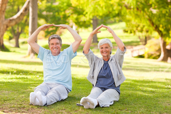 Elderly couple doing their stretches in the park Stock photo © wavebreak_media