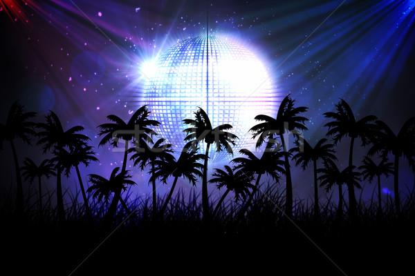 Cyfrowo wygenerowany palma disco ball strony cyfrowe Zdjęcia stock © wavebreak_media