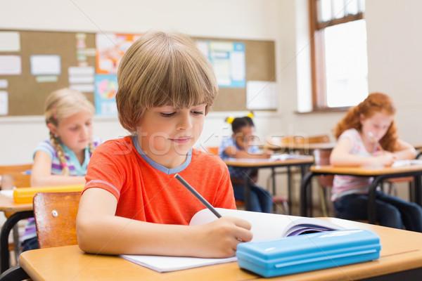 Cute uczniowie piśmie biurko klasie szkoła podstawowa Zdjęcia stock © wavebreak_media