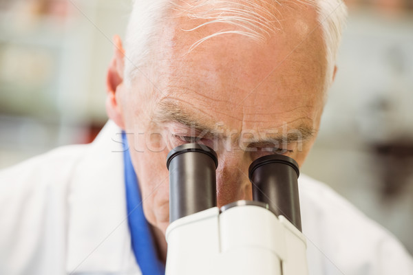 シニア 科学 作業 顕微鏡 大学 男 ストックフォト © wavebreak_media