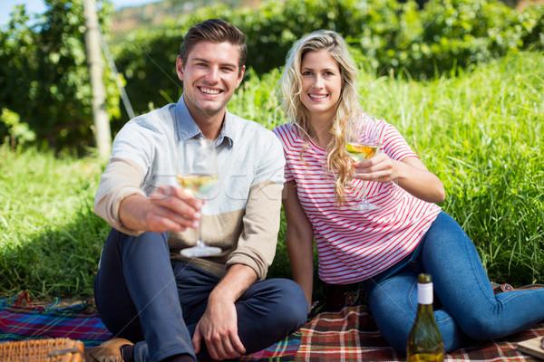 Portrait of happy couple holding wineglasses on picnic blanket Stock photo © wavebreak_media