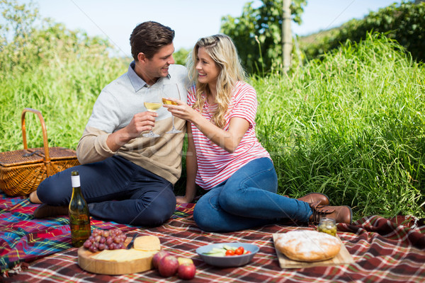 Glimlachend wijnglazen picknickdeken vergadering Stockfoto © wavebreak_media
