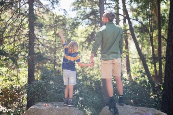 Chłopca wskazując sposób stałego ojciec lasu Zdjęcia stock © wavebreak_media