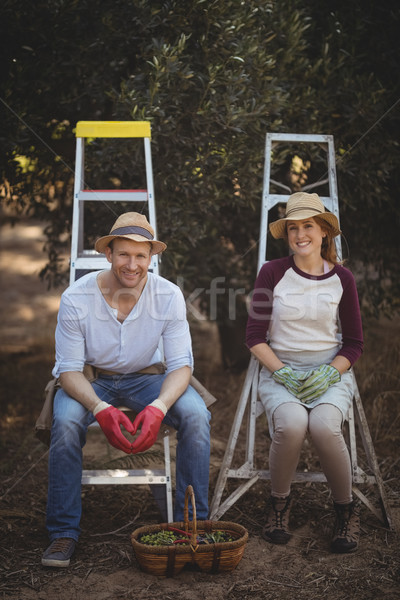 Sorridente sessão oliva fazenda retrato Foto stock © wavebreak_media