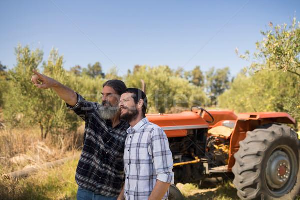 друзей указывая расстояние фермы бизнеса Сток-фото © wavebreak_media