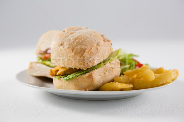 Close up of burgers with french fries in plate Stock photo © wavebreak_media