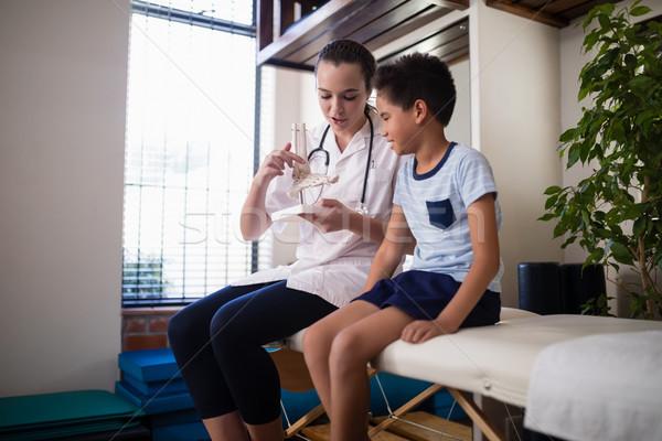 女性 セラピスト 少年 人工的な 骨 ストックフォト © wavebreak_media