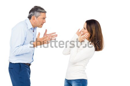 Annoyed man yelling at wife Stock photo © wavebreak_media