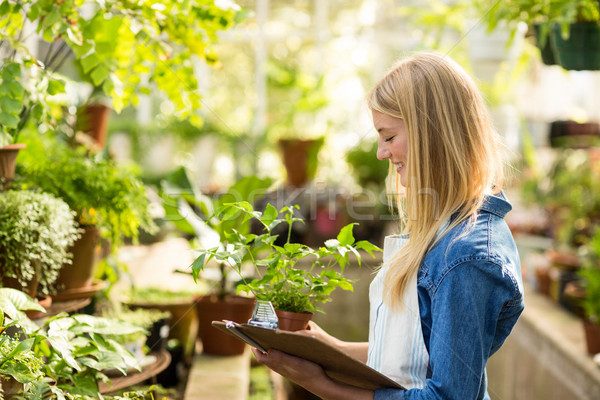 Young female gardener holding clipboard while examining plants Stock photo © wavebreak_media