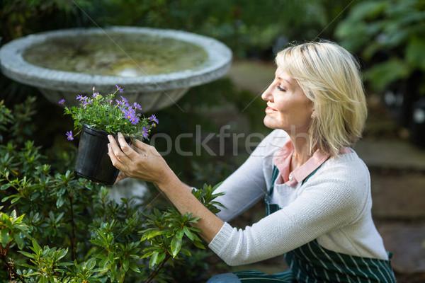 Feminino jardineiro flores trabalhando vista lateral Foto stock © wavebreak_media