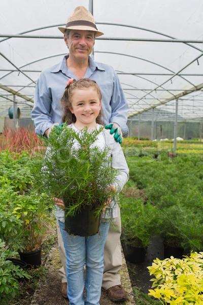 Kislány tart cserepes növény nagyapa üvegház lány Stock fotó © wavebreak_media