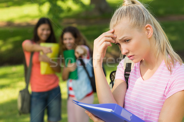 Female being bullied by group of students Stock photo © wavebreak_media