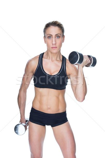 Weiblichen Bodybuilder groß Hanteln schauen Stock foto © wavebreak_media