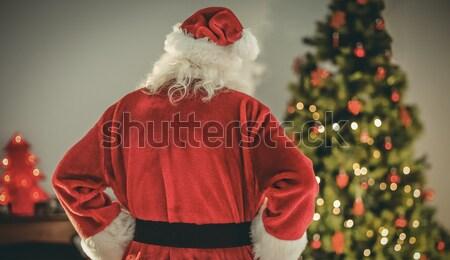 Hátsó nézet mikulás áll karácsonyfa otthon nappali Stock fotó © wavebreak_media