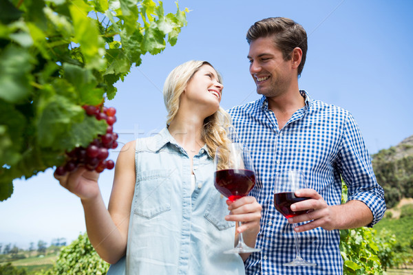 Low angle view of happy couple holding winnglasses at vineyard Stock photo © wavebreak_media