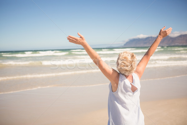Rear view of woman with arms raised standing on shore Stock photo © wavebreak_media