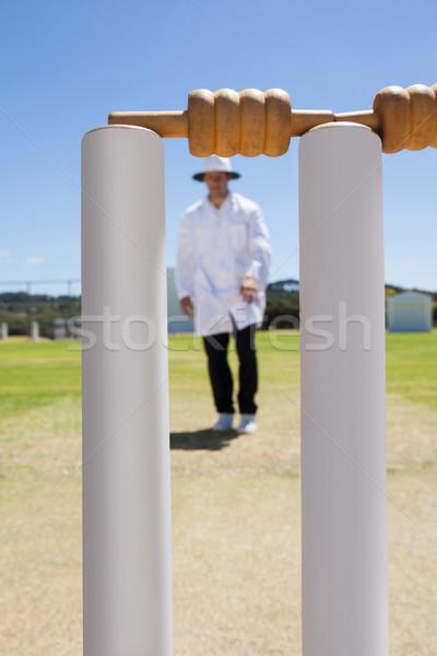Krikett döntőbíró mező áll égbolt férfi Stock fotó © wavebreak_media