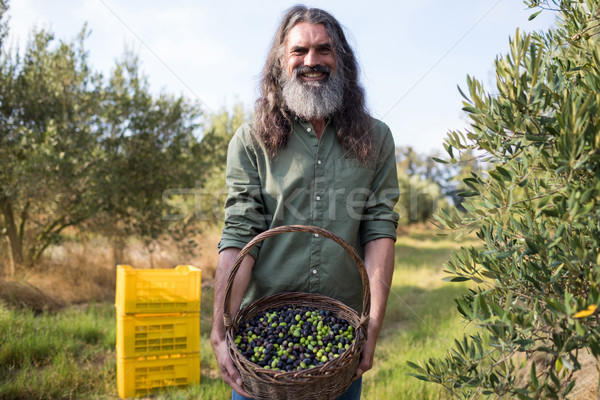 Portrait of happy man holding harvested olives in basket Stock photo © wavebreak_media