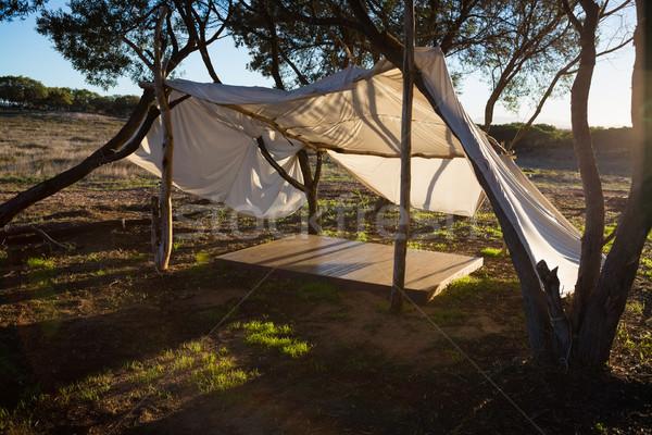 палатки лес деревья природы области тень Сток-фото © wavebreak_media