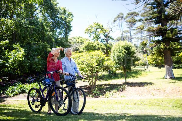 Idős pár sétál bicikli park napos idő nő Stock fotó © wavebreak_media