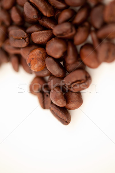 Blurred seeds of coffee laid out together against a white blackground Stock photo © wavebreak_media