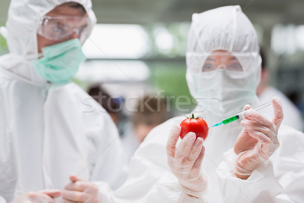 Estudante tomates verde líquido lab outro Foto stock © wavebreak_media