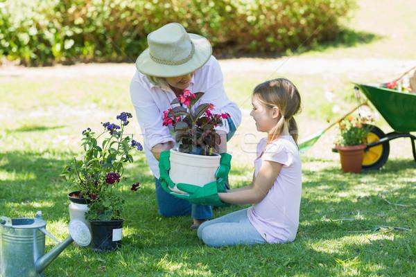 Grandmother and granddaughter engaged in gardening Stock photo © wavebreak_media