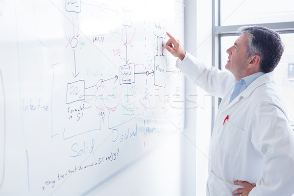 Fókuszált tudós mutat egyenlet tábla laboratórium Stock fotó © wavebreak_media