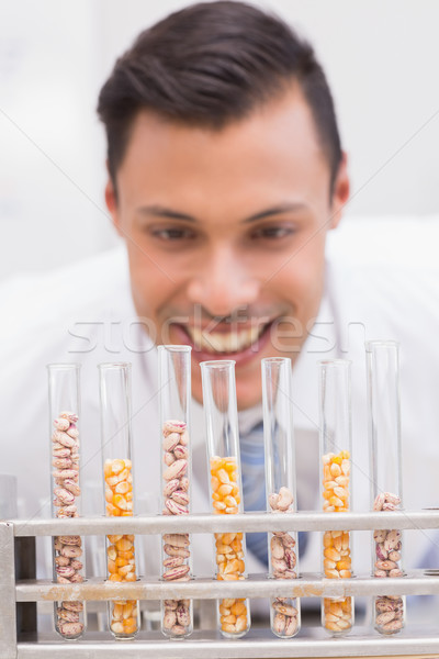 Happy scientist looking at tubes of corn and kernel  Stock photo © wavebreak_media