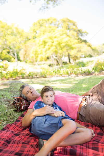 Apa fia piknik pokróc park napos idő férfi természet Stock fotó © wavebreak_media