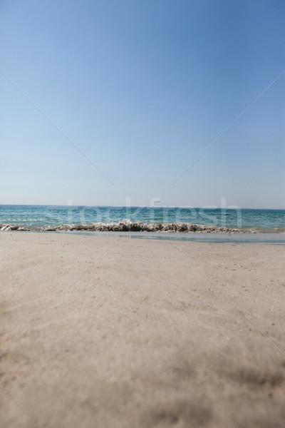 Görmek turkuaz deniz plaj açık gökyüzü Stok fotoğraf © wavebreak_media