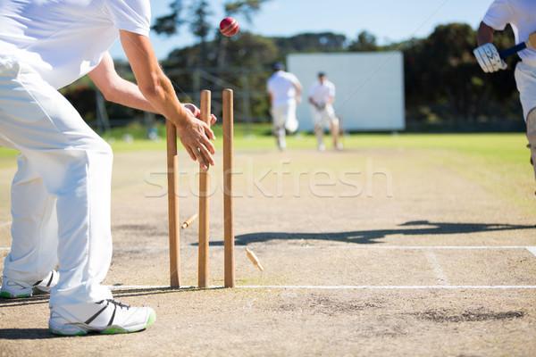 Wicket keeper hitting stumps during match Stock photo © wavebreak_media