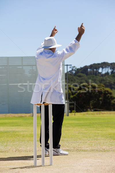 Full length of cricket umpire signalling six runs during match Stock photo © wavebreak_media