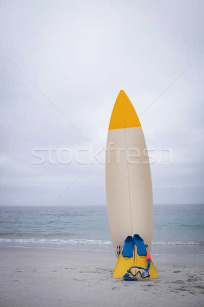 Surfboard with flippers and scuba mask Stock photo © wavebreak_media