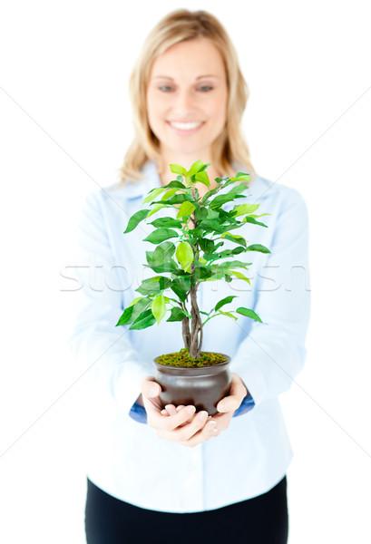 Portret zachwycony kobieta interesu roślin Zdjęcia stock © wavebreak_media