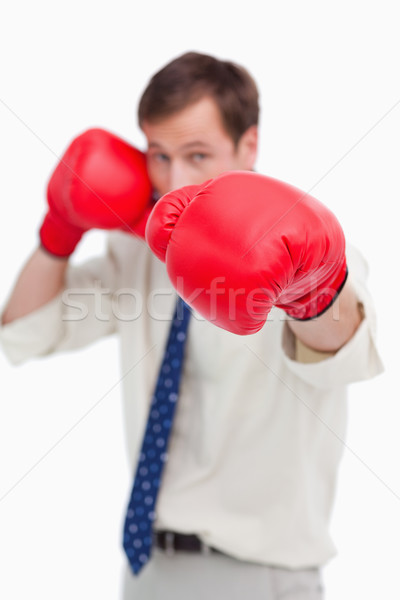 Biznesmen rękawice bokserskie biały działalności człowiek garnitur Zdjęcia stock © wavebreak_media