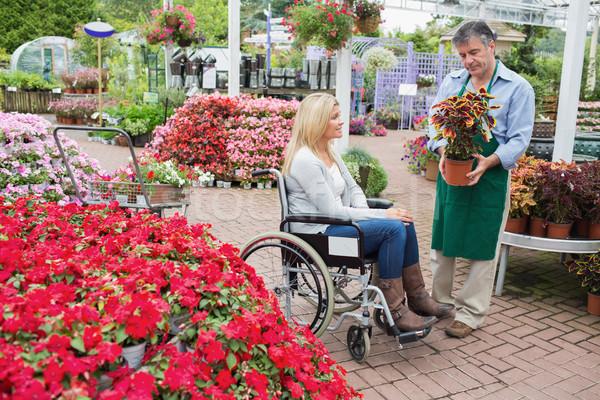 Stock foto: Frau · Rollstuhl · kaufen · Anlage · Garten · Zentrum