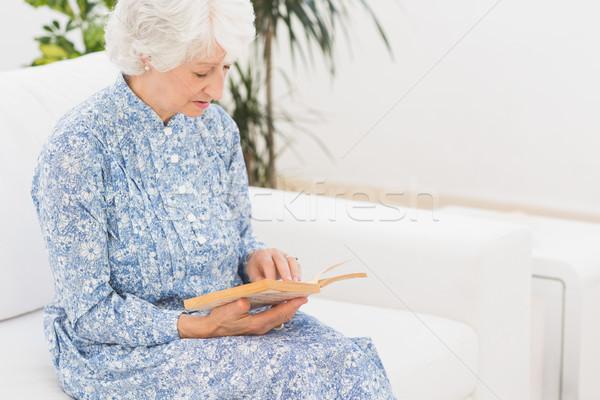 пожилого женщину чтение старые книги диван Сток-фото © wavebreak_media