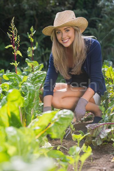 Cute jardinage maison jardin Photo stock © wavebreak_media
