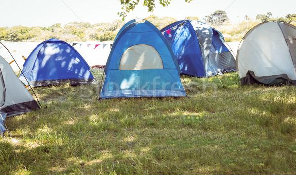 Blauw camping muziekfestival gras zomer camping Stockfoto © wavebreak_media