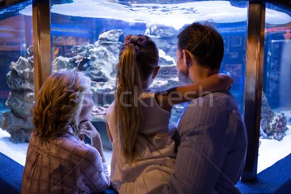 Dragen paar naar vis tank Stockfoto © wavebreak_media