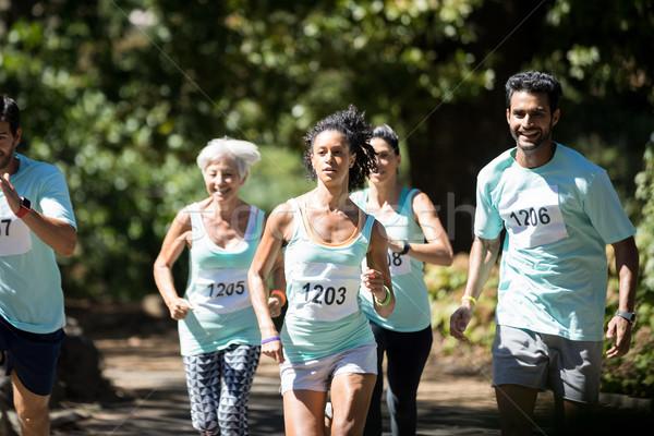 Maraton spaceru parku kobieta Zdjęcia stock © wavebreak_media