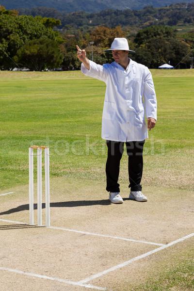 Críquete árbitro fora combinar Foto stock © wavebreak_media